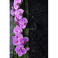 Sticker adesivo o poster fl_00043 in bambù della linea Orchidea, colore: fucsia, Poster, 29,7x42 cm (Fucsia Bambù)
