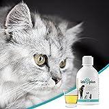 IdaPlus- BARF Leinöl [kaltgepresst] – für Pferde | Reich an Vitamin D, Omega- 3 und Omega- 6 Fettsäuren | Fördert starken Knochenaufbau und sorgt für ein glänzendes Fell (500 ml) - 7