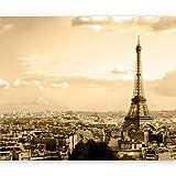 murando Papier peint intissé 350x270 cm Décoration Murale XXL Poster Tableaux Muraux Tapisserie Photo Trompe l'oeil Paris 100404-110