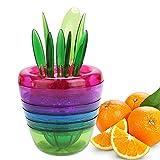 Yivans Fruits Plant Obstschneider Salatschüsseln Lemon Squeezer Schäler speziell für