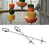 Dairyshop Spiedi in metallo per spiedini di cibo, carne, fritta, per uccello, pappagallo, da gabbia in acciaio INOX, giocattolo
