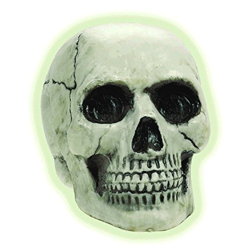 Amscan 670562 Boneyard Glow in the Dark Skull (Dark In Glow The Dekoration Halloween)