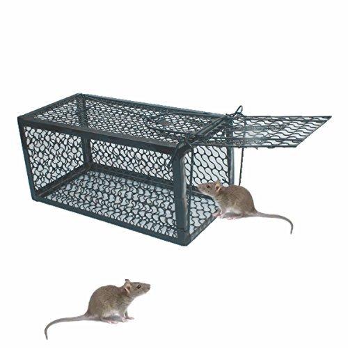 skycabin Trampa de Jaula para Ratón, Ratas, Hamster, Topo, Mustela, Gopher