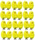 20 x Mini Plush Yellow Chicks Easter Egg Hunt Bonnet Decoration Accessories