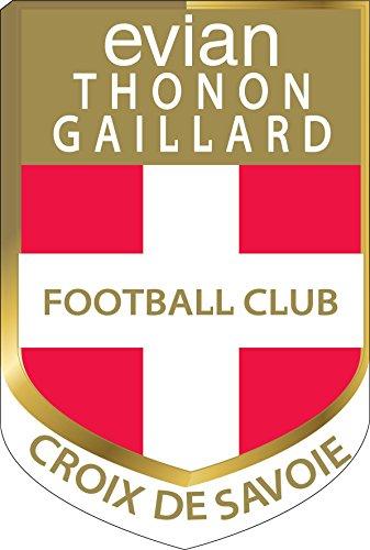 Preisvergleich Produktbild Sticker Foot Evian Thonon Gaillard FC ETG, Hauteur 130cm