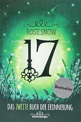 17 Das zweite Buch der Erinnerung Bd2