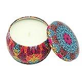 BESTLLE 2pcs Duftkerze Vintage Soja-Wachs Topf Kerze geeignet zur Entlastung Stress und Aromatherapie, geeignet zum Baden Yoga Weihnachten Valentinstag Geburtstags Geschenk