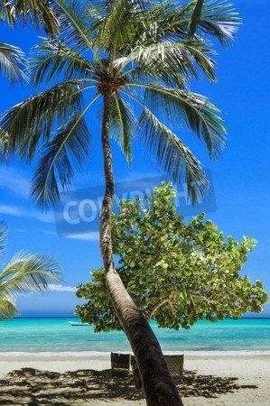 adrium Alu-Dibond-Bild 80 x 120 cm:Palma, Beach, Beach of The Atlantic Ocean, Landscape, Bild auf Alu-Dibond -