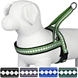 Blueberry Pet Harnesses Classic Solid No Pull Jacquard Print Neoprene Padded Dog Harness in Moss Green 2cm Medium, Matching Collar & Lead Available Separately