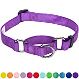 Blueberry Pet Safety Training Martingale Dog Collar, Dark - Best Reviews Guide