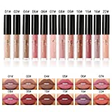 Matt Nude Lipgloss Set Valuemakers