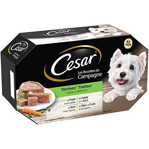 CESAR Les Recettes de Campagne - Barquettes en terrine pour chien adulte aux 4 saveurs traiteur, 24 barquettes de 150g