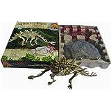 Squelette de Dinosaure Stegosaurus Kit de Fouille Jeu Archéologie Jouet