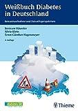 Wei?buch Diabetes in Deutschland: Bestandsaufnahme und Zukunftsperspektiven