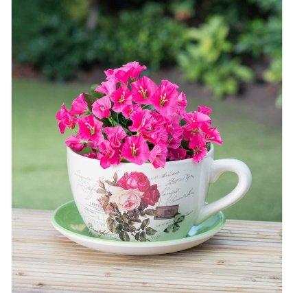 beautiful-ceramic-teacup-saucer-planter-traditional-rose