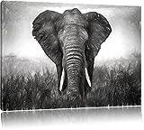bildschöner Elefant auf Leinwand, XXL riesige Bilder fertig gerahmt mit Keilrahmen, Kunstdruck auf Wandbild mit Rahmen, günstiger als Gemälde oder Ölbild, kein Poster oder Plakat, Format:120x80 cm