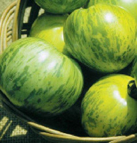 """Ungarische Samen Tomate""""Green Zebra"""" fruchtiges Aroma,von unserer ungarischen Farm samenfest, nur organische Dünger, KEINE Pesztizide"""