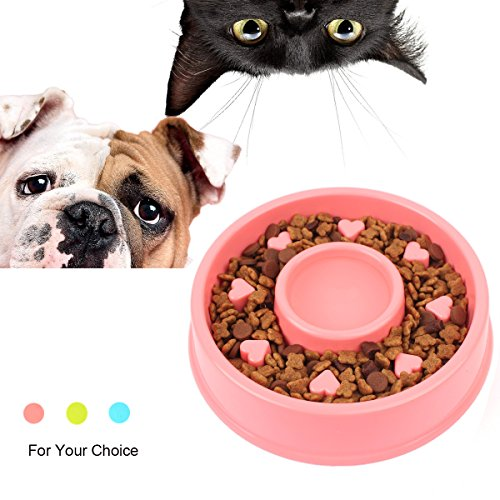 Slow Feed Dog Bowl 8 Inch Slow Eating Preventing Choking Healthy