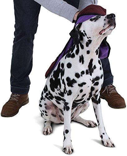 hundeinfo24.de Knuffelwuff 13018 Hundehandtuch aus Mikrofaser mit integrierter Handschlaufe, 67 x 44 cm