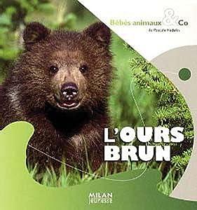 "Afficher ""L'Ours brun"""