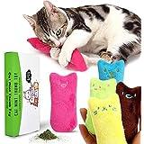 Katzenminze Plüsch Spielzeug,CJMJ katzen Kauen Kissen Spielzeug/PP Baumwolle und Katzenminze Füllung (5 /Set)