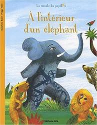 La minute du papillon : A l'intérieur d'un éléphant