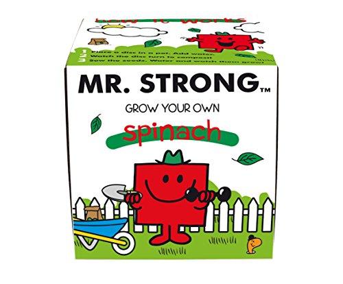 mr-men-mr-strong-grow-kit-multi-colour