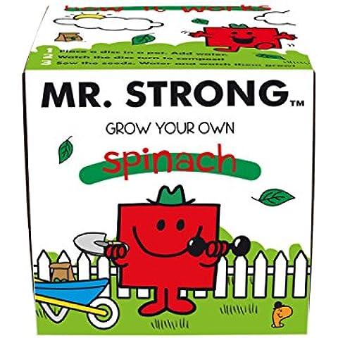 Mr Men  - Fertilizante multiusos, color multicolor