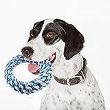 veylin Hund Seil Spielzeug  1Stück Baumwolle Seil Spielzeug für Hunde kauen und Interaktives Spielen Training