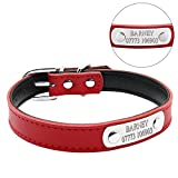 Berry Adjustable Leather Padded Personalized Pet Dog Collars