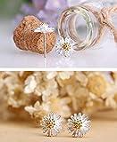 B.Z La Vie Damen Schmuck Sets Halskette Ohrringe 925 Silber Sonnen Blume Geschenk für Frau -