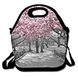 VTXWL Blossoms In Central Park Cherry Bloom Trees Forest Spring Springtime Landscape Lunch Tote Lunch Bag Office Reusable