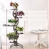 DSJ Blumen-Gestell-Blumen-Gestell-europäischer Einfacher Balkon-Eisen-Blumen-Gestell/Multi-Storey Innen- und Metallständer im Freien im Freien vertikales Blumen-Gestell,CCC
