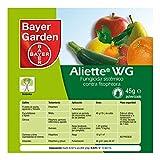 Bayer Garden Aliette WG - Fungicida sistémico para cesped y coníferas, ideal para combatir los hongos. Formato 45g