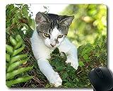 Yanteng Gaming Mouse Pad, Kitten Animal Cute Cat Mouse Pad,...