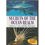 Secrets of the Ocean Realm - Nature's Incredible Designs