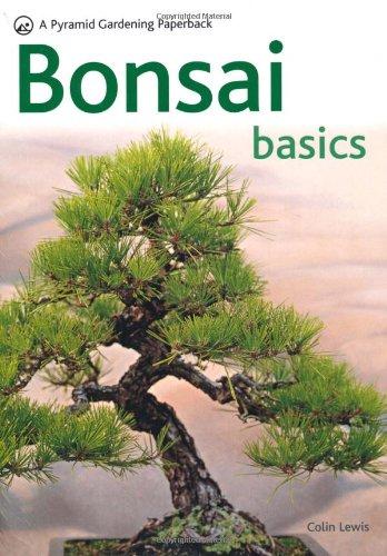 bonsai-basics-a-comprehensive-guide-to-care-and-cultivation-pyramids