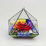lkklily-colorful fiori a San Valentino rose Eternal creativo novità regalo vetro serra Fresh Roses rose colorate Only