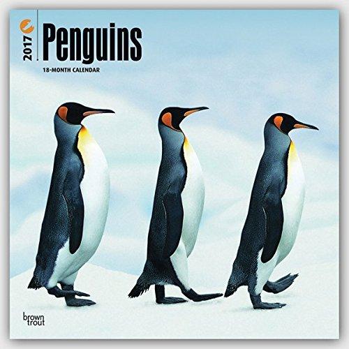 penguins-pinguine-2017-18-monatskalender-original-browntrout-kalender-mehrsprachig-kalender-wall-kal