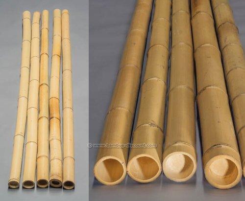 bambus-discount.com BMY-200-090 CB000226