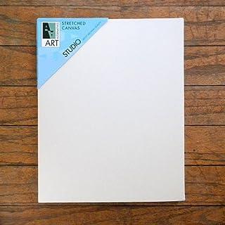 Art Alternatives Aa Studio Stretched Canvas Case/10 12X24