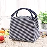Getko With Device Canvas Cute Insulated Thermal Cooler Lunch Tote Storage Bag (Multicolour)