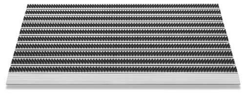 Floordirekt PRO Repräsentative Fußmatte Profi Brush Slim, extraflache Ausführung