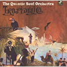 Tropidelico by The Quantic Soul Orchestra (2007-11-13)