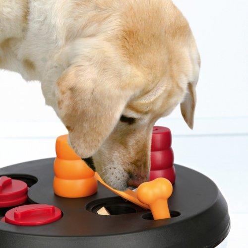 Trixie Dog Activity Strategiespiel Flip Board, Intelligenzspielzeug Hunde