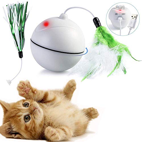 KatzenSpielzeug elektrisch Ball mit eingebautem Akku 360 Grad-selbstdrehender USB Ladevorgang Ball mit LED Licht - Abnehmbarer Feder Interaktives Spielzeug -