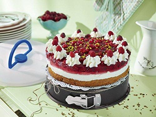 Kochen & Genießen Backbleche & -formen Zuversichtlich Zenker Springform Ø 24 Cm Backform Mit Antihaftbeschichtung Runde Kuchenform
