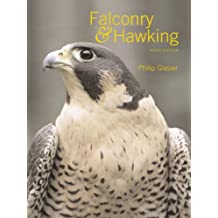 Falconry and Hawking