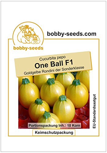 Bobby-Seeds Zucchinisamen One Ball F1 Portion