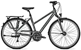Trekkingbike Kalkhoff IMAGE 30 30G 28 Zoll Trapez, Rahmenhöhen:45;Farben:Stormgrey